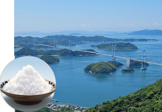 瀬戸のほんじお 焼き塩